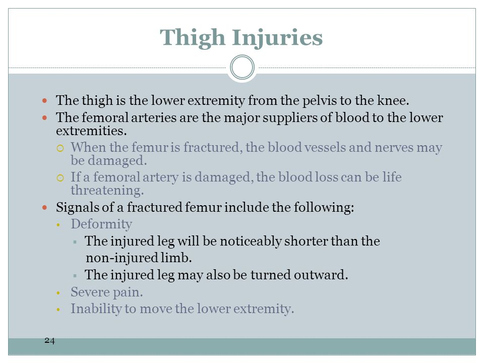 Thigh Injuries The thigh is the lower extremity from the pelvis to the knee.