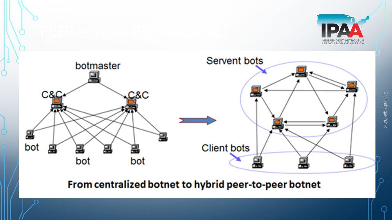Peer – to – Peer Botnet