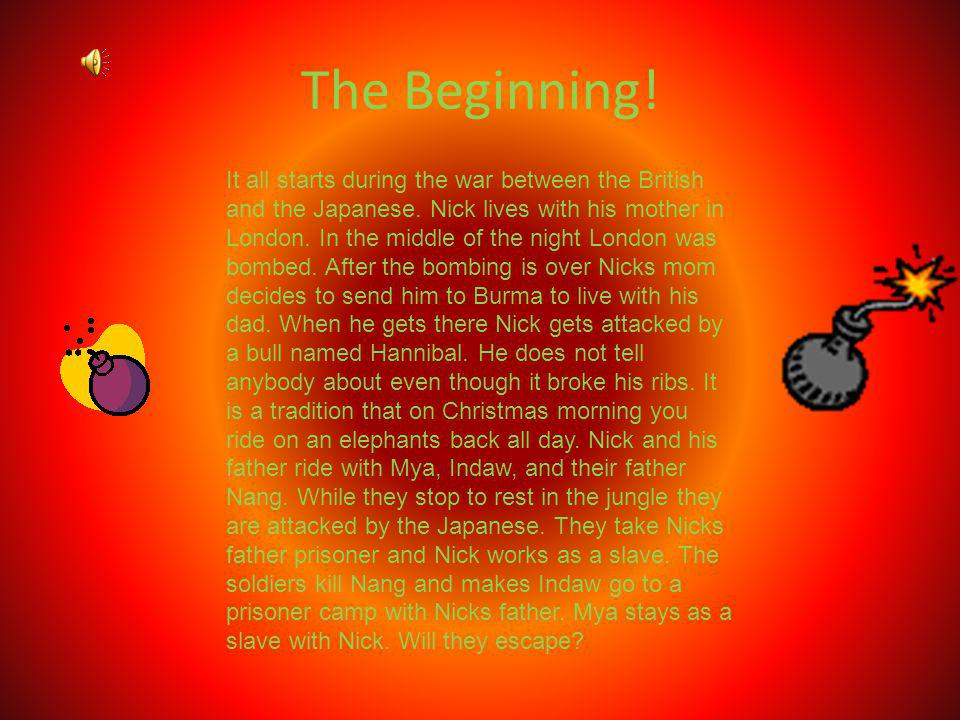 The Beginning!