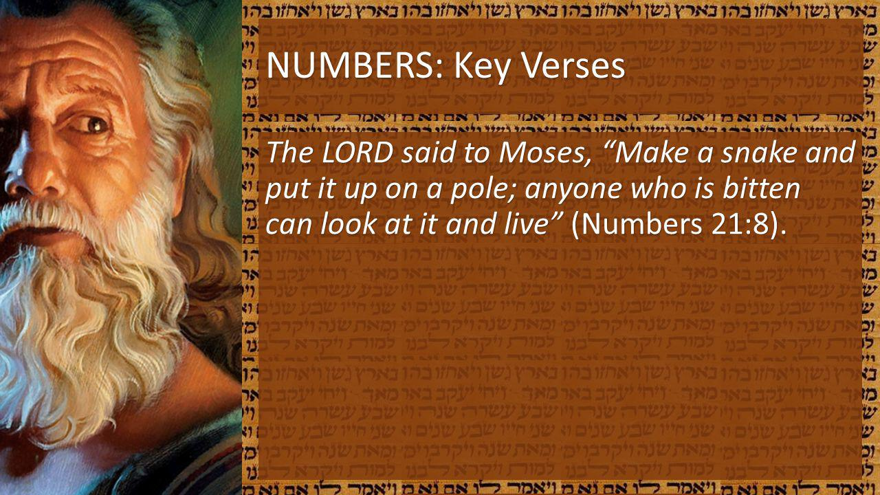 NUMBERS: Key Verses The LORD said to Moses, Make a snake and put it up on a pole; anyone who is bitten can look at it and live (Numbers 21:8).