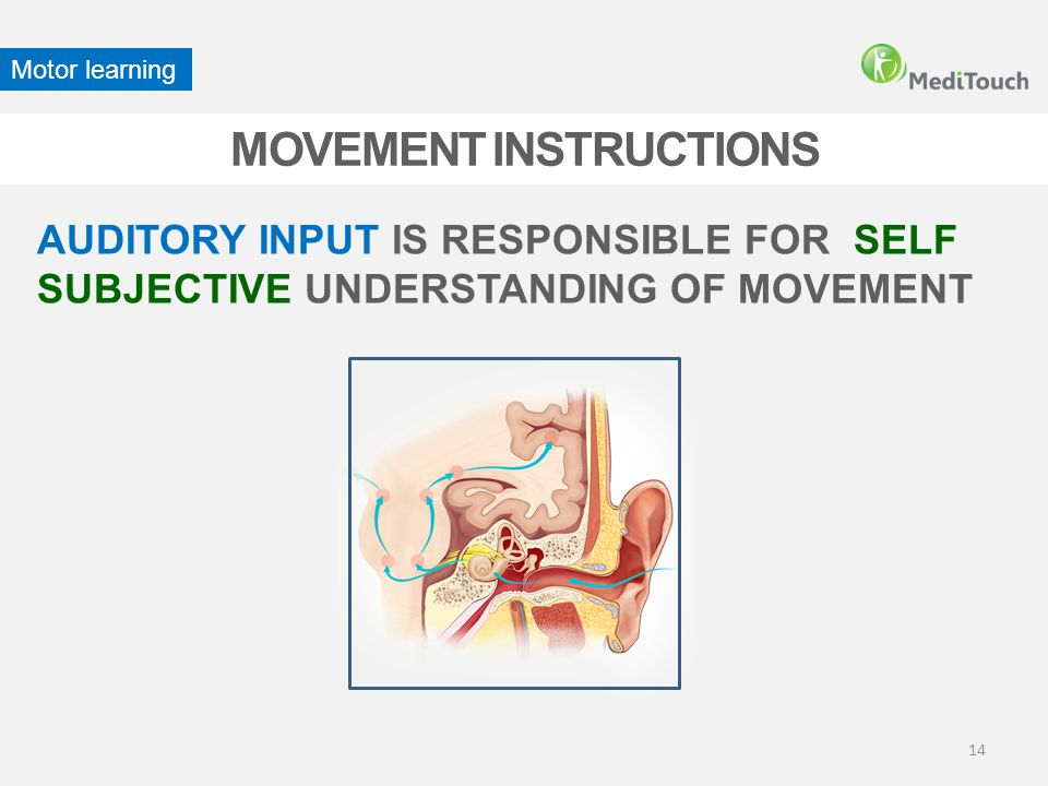 MOVEMENT INSTRUCTIONS