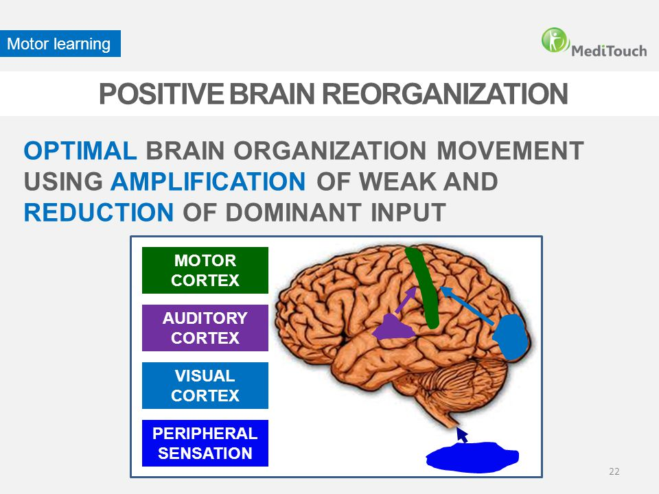 POSITIVE BRAIN REORGANIZATION