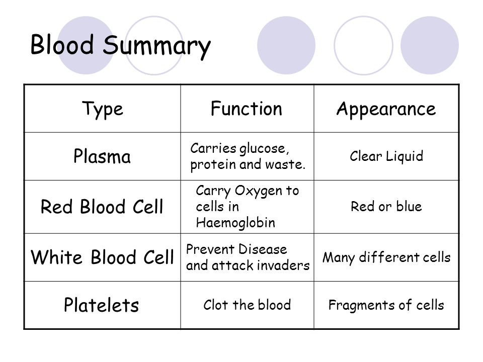 Blood Summary Type Function Appearance Plasma Red Blood Cell