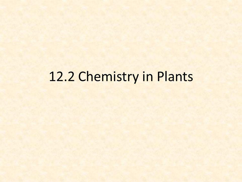 12.2 Chemistry in Plants