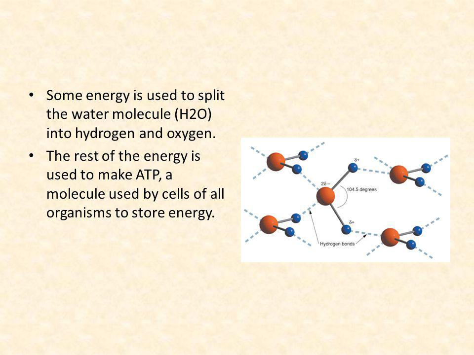 Some energy is used to split the water molecule (H2O) into hydrogen and oxygen.