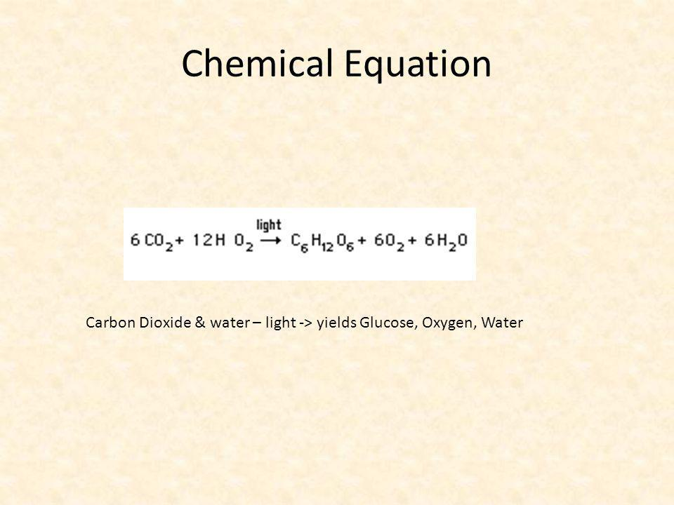 Chemical Equation Carbon Dioxide & water – light -> yields Glucose, Oxygen, Water