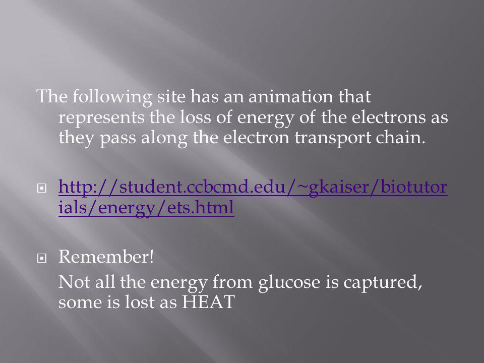 The following site has an animation that represents the loss of energy of the electrons as they pass along the electron transport chain.