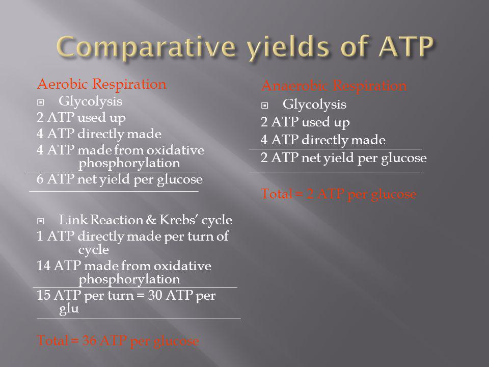 Comparative yields of ATP