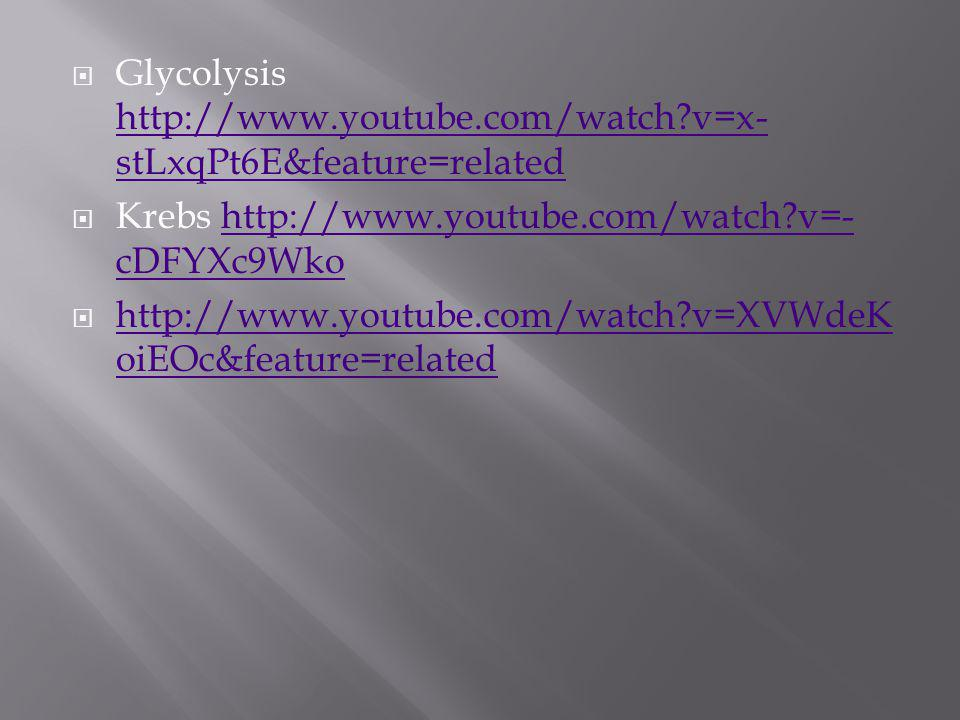 Glycolysis http://www.youtube.com/watch v=x-stLxqPt6E&feature=related