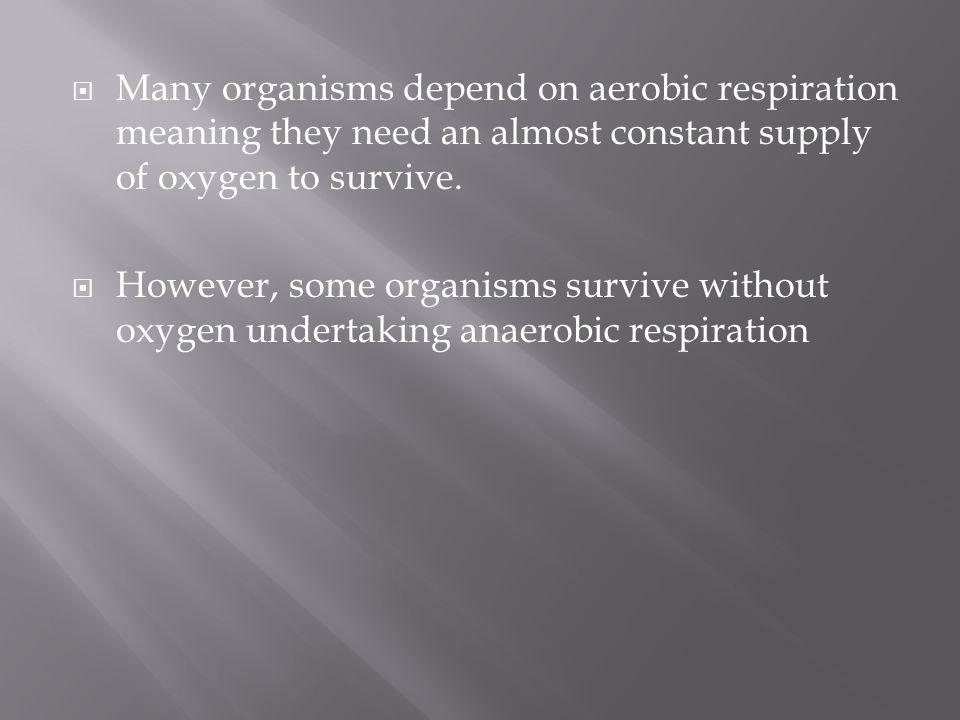Many organisms depend on aerobic respiration meaning they need an almost constant supply of oxygen to survive.