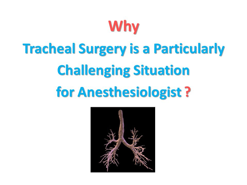 Tracheal Surgery is a Particularly Challenging Situation