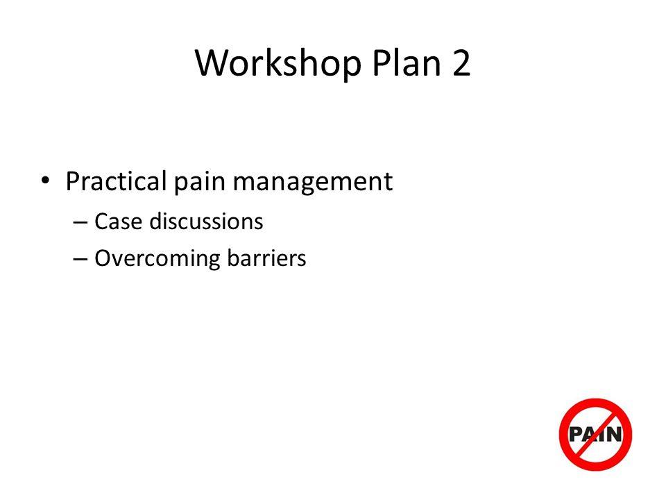 Workshop Plan 2 Practical pain management Case discussions