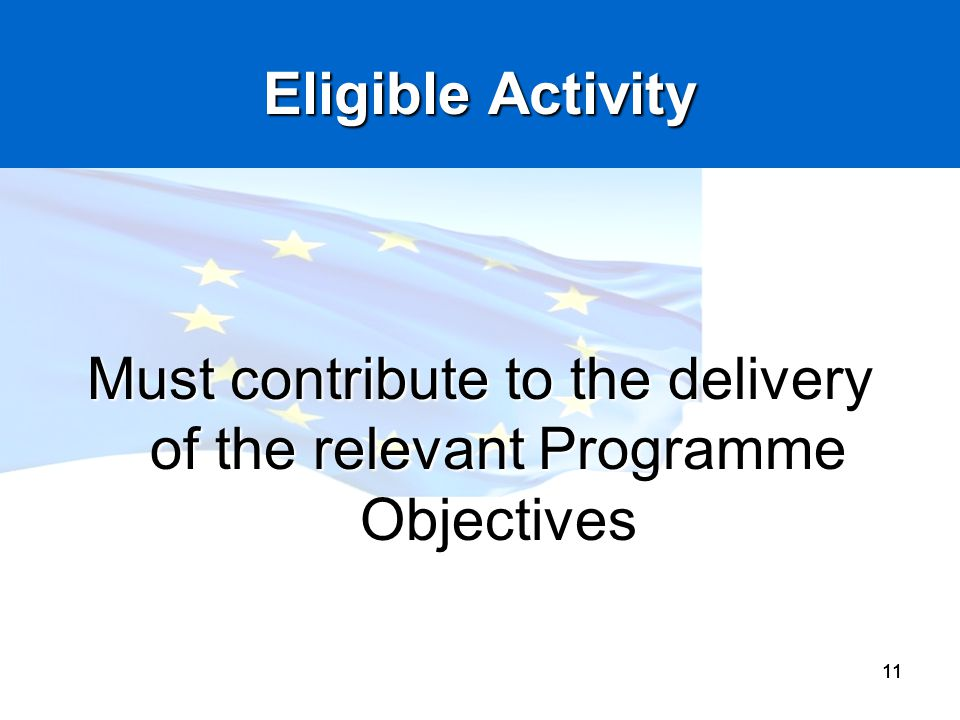 Must contribute to the delivery of the relevant Programme Objectives