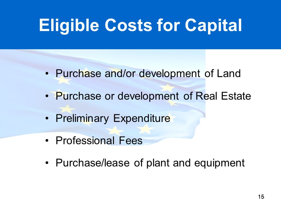 Eligible Costs for Capital