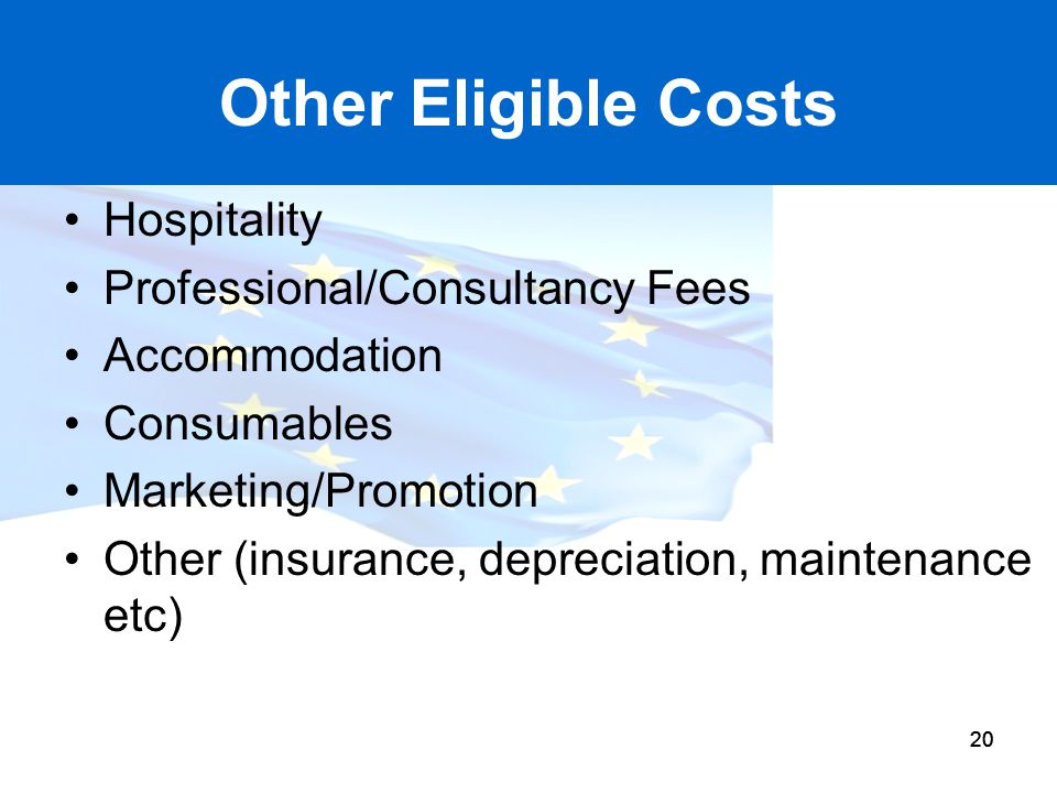 Other Eligible Costs Hospitality Professional/Consultancy Fees