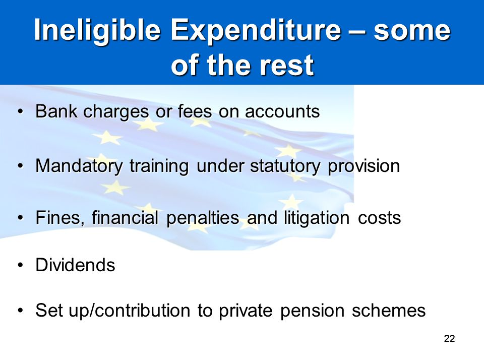 Ineligible Expenditure – some of the rest