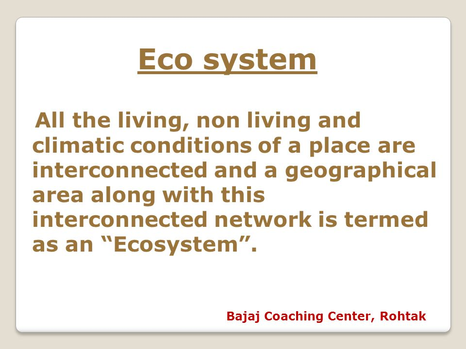 Eco system Bajaj Coaching Center, Rohtak