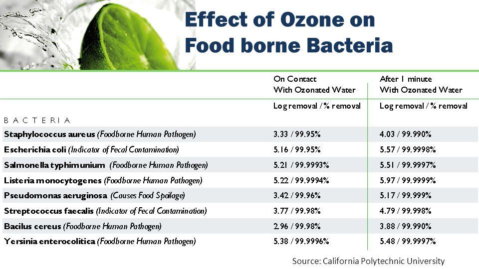 Effect of Ozone on Food borne Bacteria