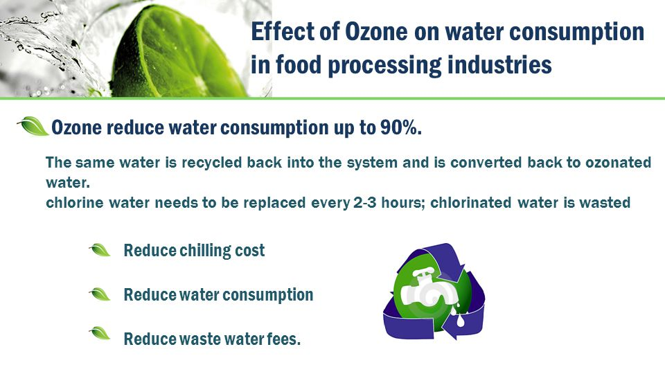 Effect of Ozone on water consumption in food processing industries