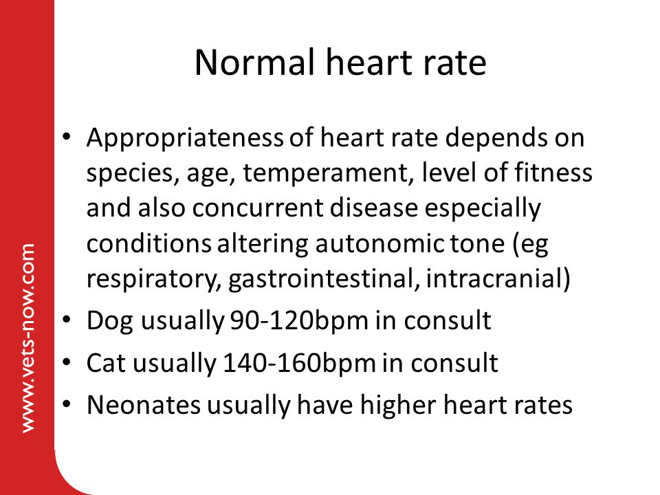 Normal heart rate