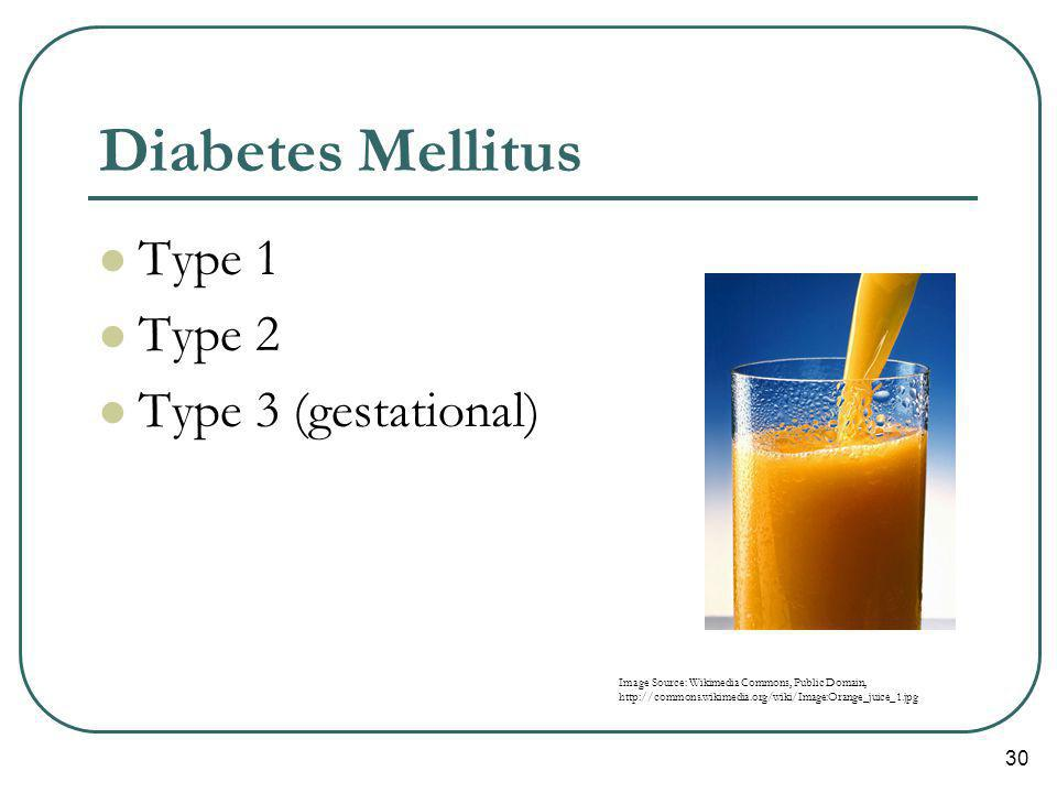 Diabetes Mellitus Type 1 Type 2 Type 3 (gestational)