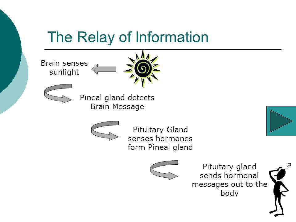 The Relay of Information