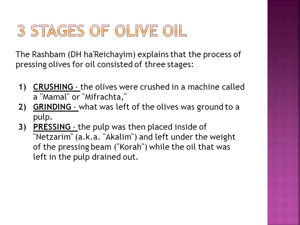 3 Stages of Olive Oil The Rashbam (DH ha Reichayim) explains that the process of pressing olives for oil consisted of three stages: