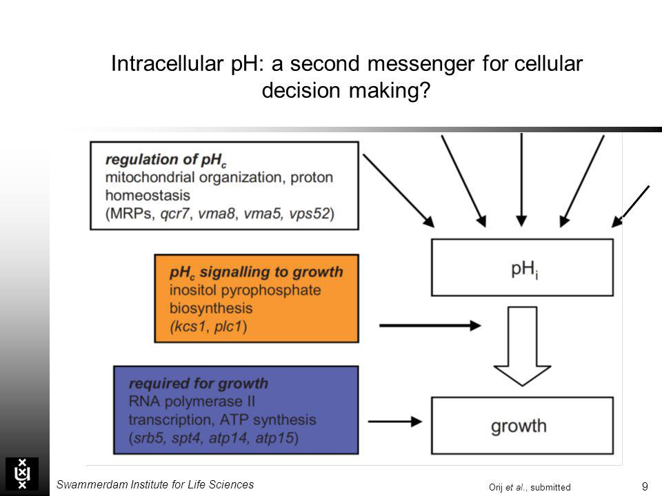 Intracellular pH: a second messenger for cellular decision making