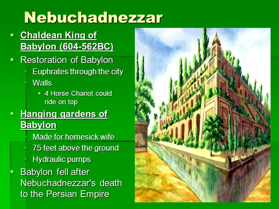 Nebuchadnezzar Chaldean King of Babylon ( BC)