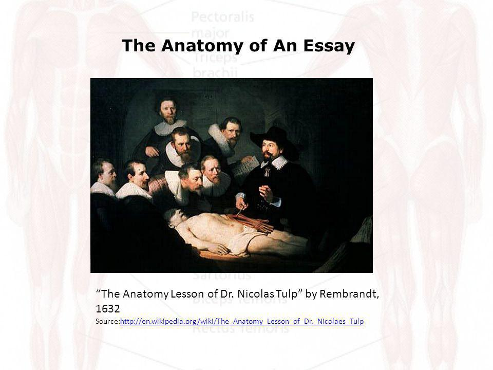 The Anatomy of An Essay