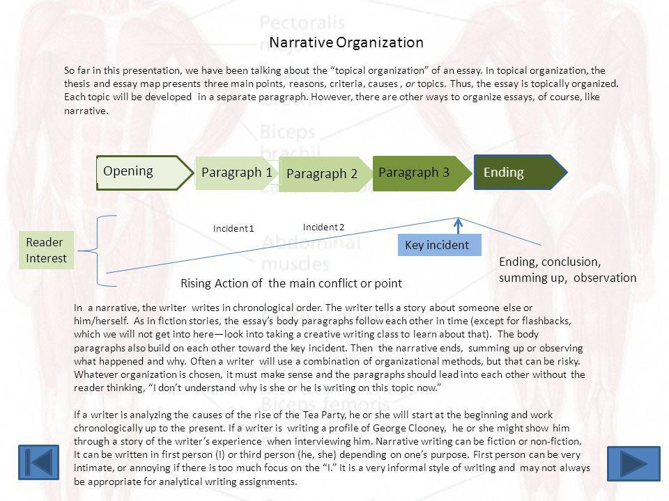 Narrative Organization
