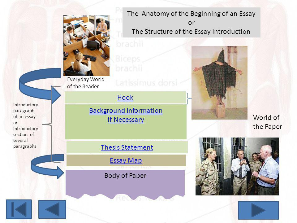 The Anatomy of the Beginning of an Essay or