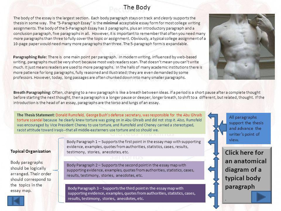 Click here for an anatomical diagram of a typical body paragraph