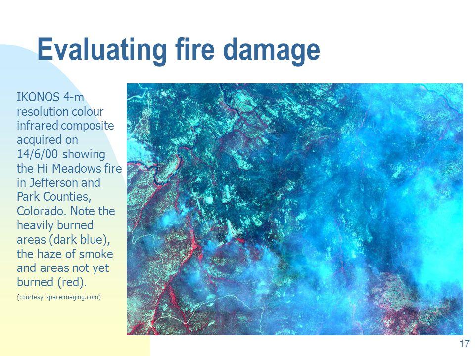 Evaluating fire damage
