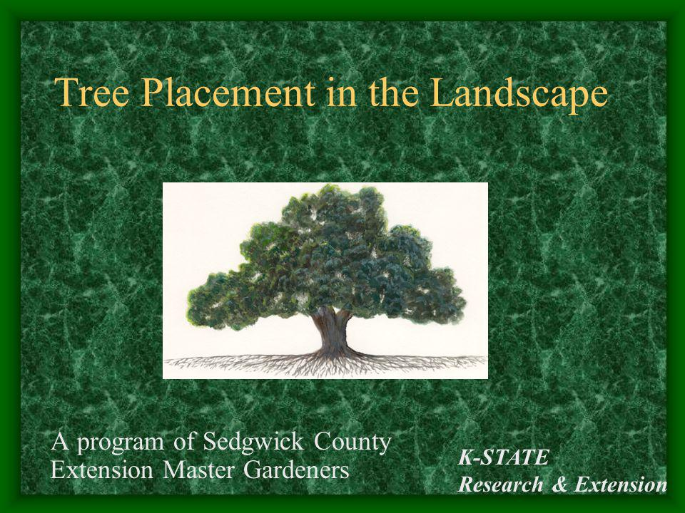 Tree Placement in the Landscape