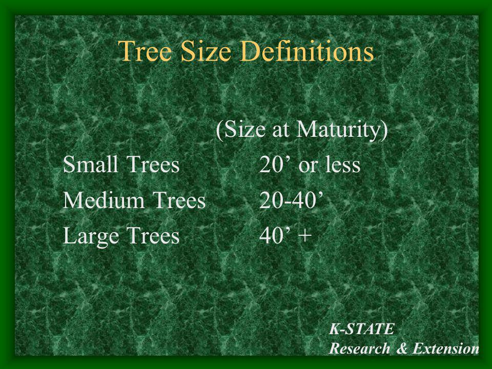 Tree Size Definitions Small Trees 20' or less Medium Trees 20-40'