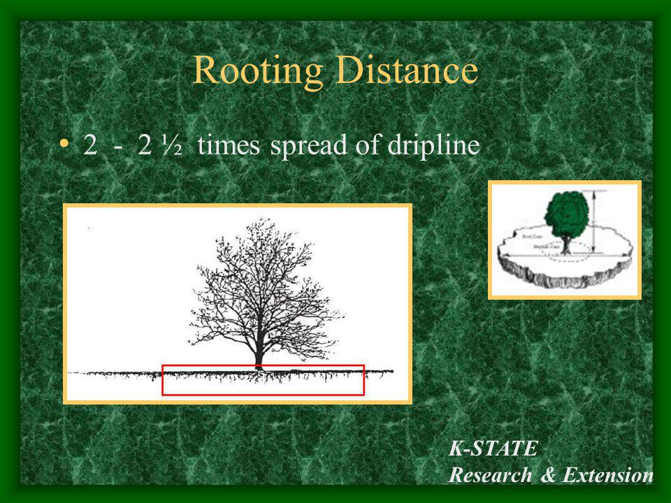 Rooting Distance 2 - 2 ½ times spread of dripline K-STATE