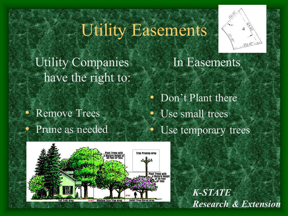 Utility Companies have the right to: