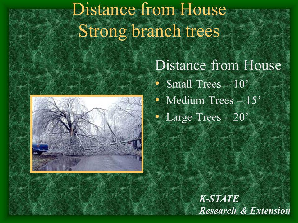 Distance from House Strong branch trees