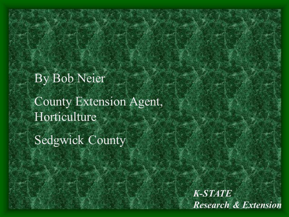 County Extension Agent, Horticulture