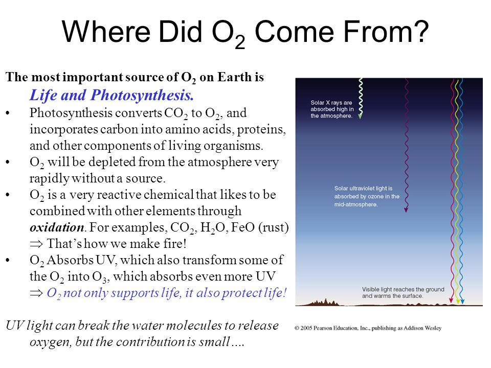 Where Did O2 Come From The most important source of O2 on Earth is Life and Photosynthesis.