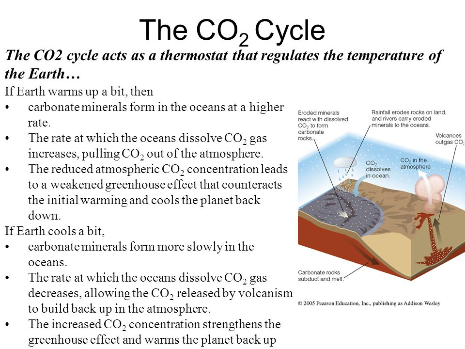 The CO2 Cycle The CO2 cycle acts as a thermostat that regulates the temperature of the Earth… If Earth warms up a bit, then.