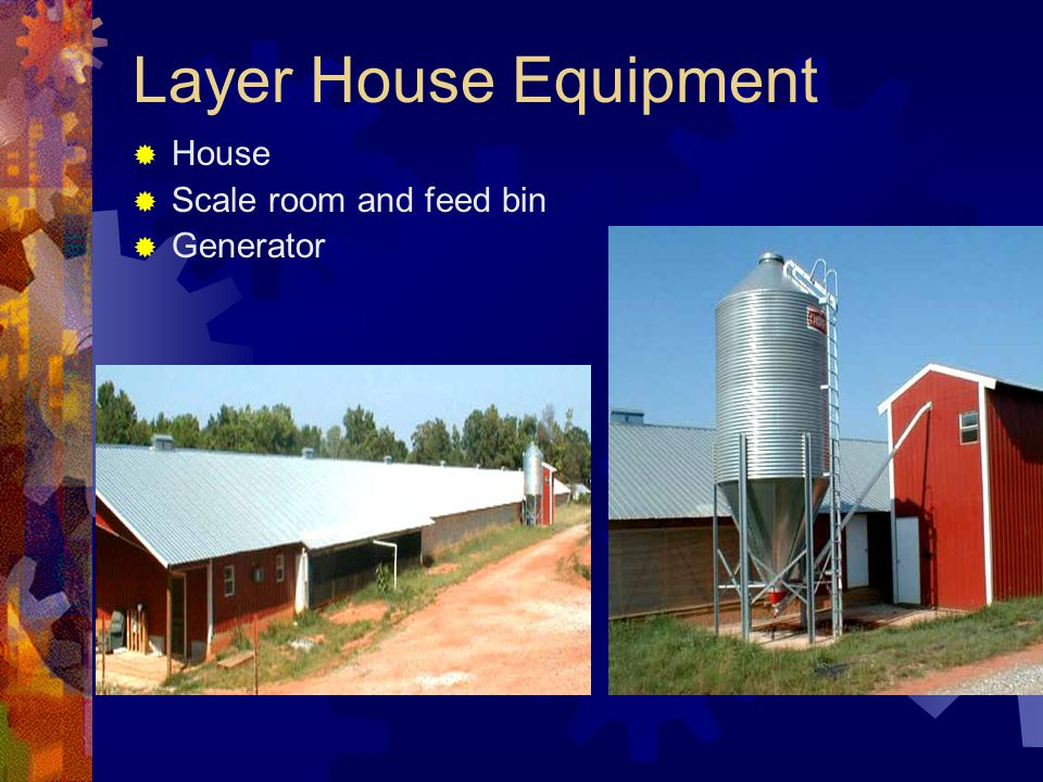 Layer House Equipment House Scale room and feed bin Generator