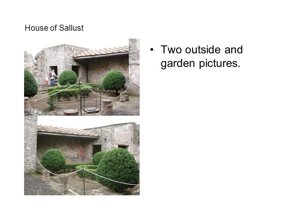 Two outside and garden pictures.