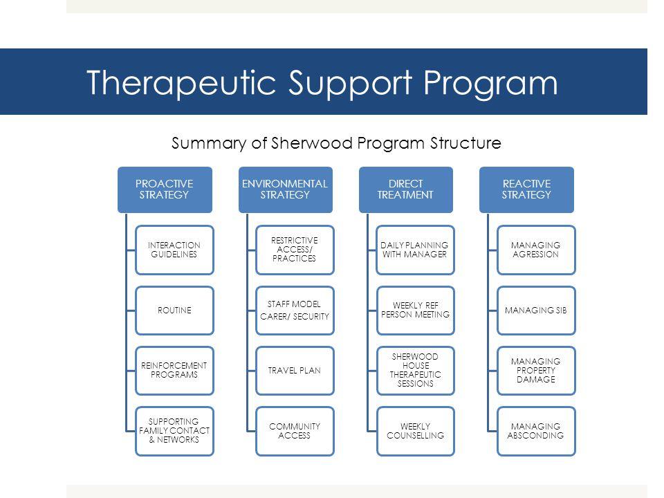 Therapeutic Support Program