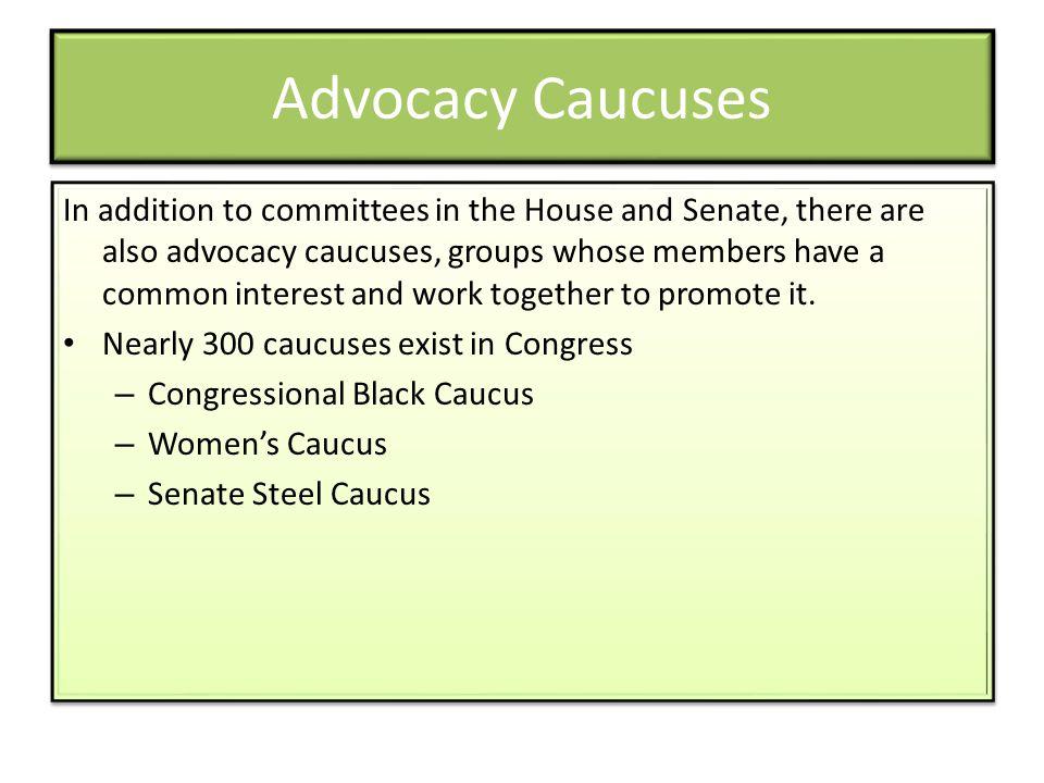 Advocacy Caucuses