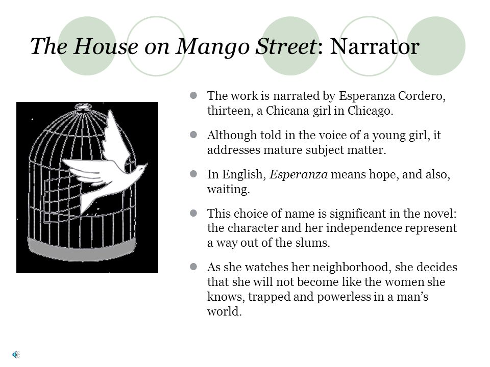 The House on Mango Street: Narrator