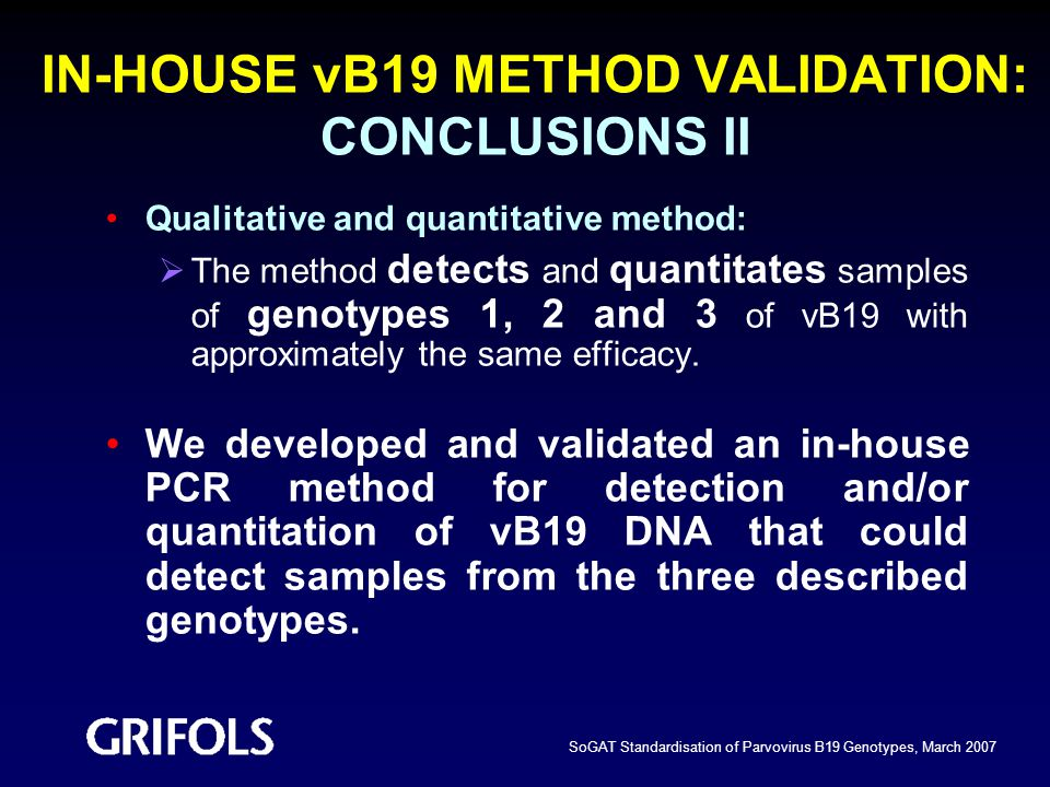 IN-HOUSE vB19 METHOD VALIDATION: CONCLUSIONS II