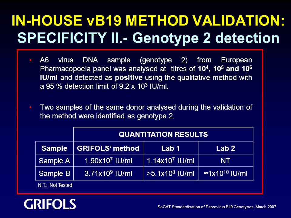 IN-HOUSE vB19 METHOD VALIDATION: SPECIFICITY II.- Genotype 2 detection
