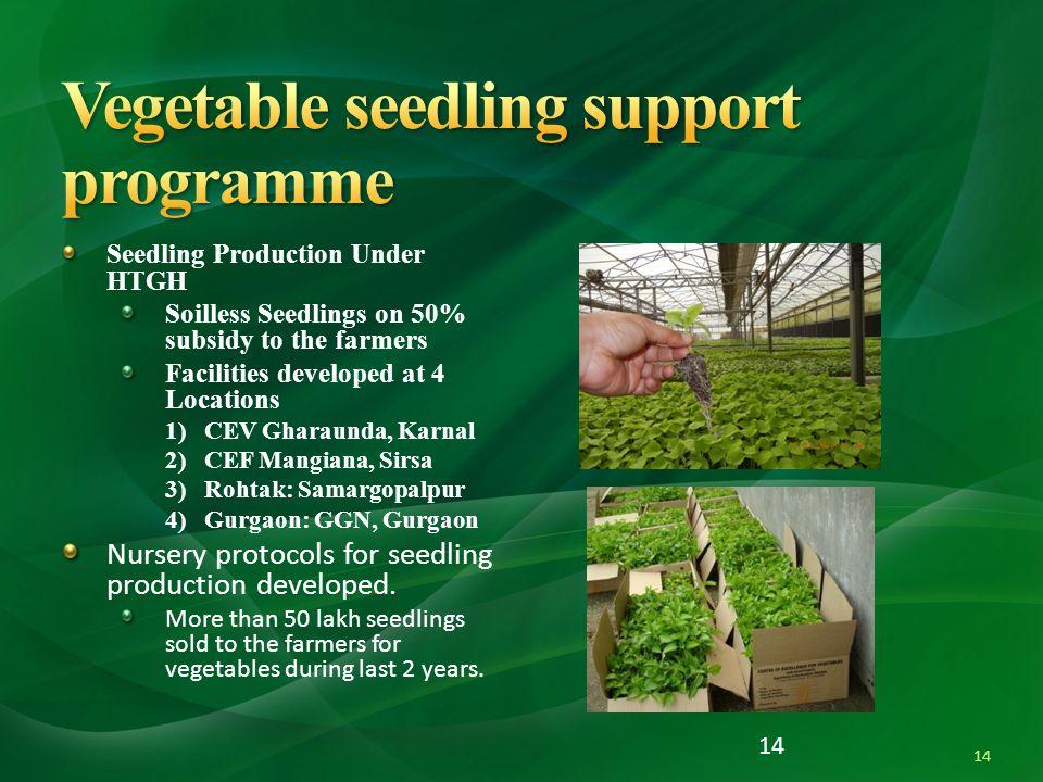 Vegetable seedling support programme